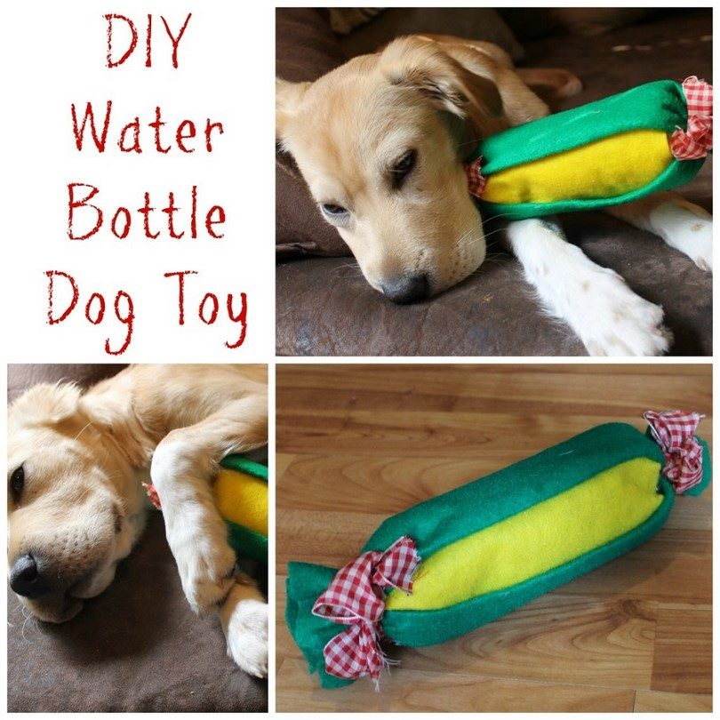 homemade-eco-dog-toy